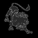 Лев - Leo 23 июля – 23 августа