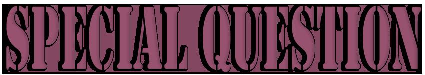 Специальный вопрос в английском